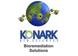 konark group
